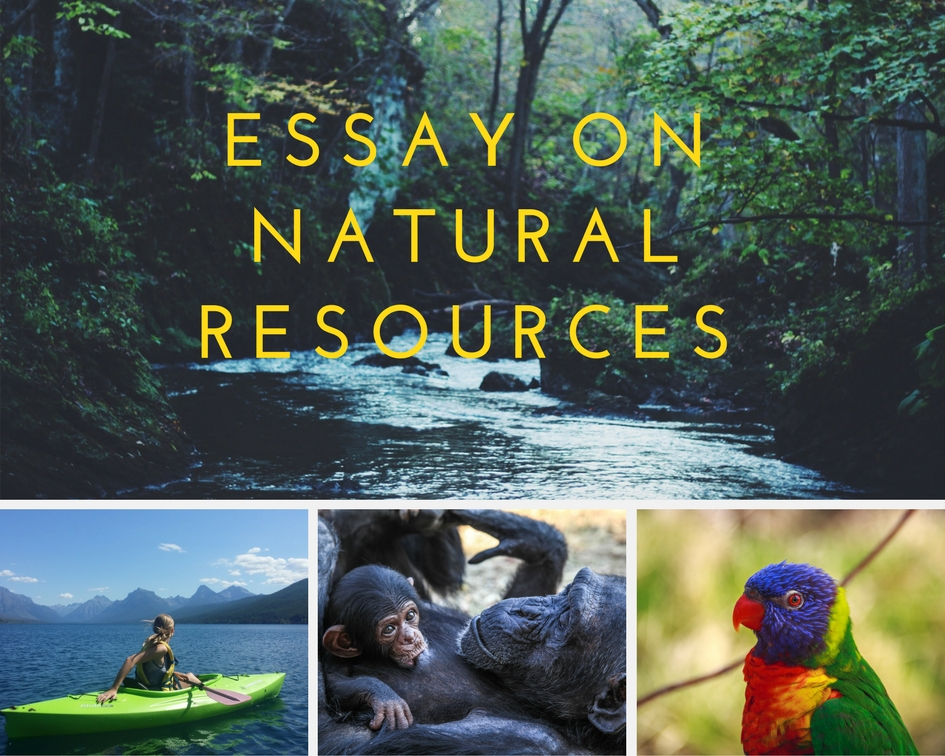 Essay On Science And Society The First One Means That It Can Be Used All Along And It Is Almost  Inexhaustible Because It Can Renew The Second Group Includes Fossil Fuels  That Cannot Be  Persuasive Essay Topics For High School Students also Thesis Support Essay Essay Sample On Natural Resources Critical Essay Thesis Statement